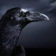 DarkRamb